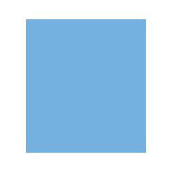 Blug Icon