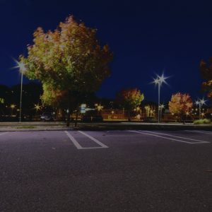 Parking Lot at Night with Trees